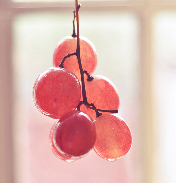 fruits14