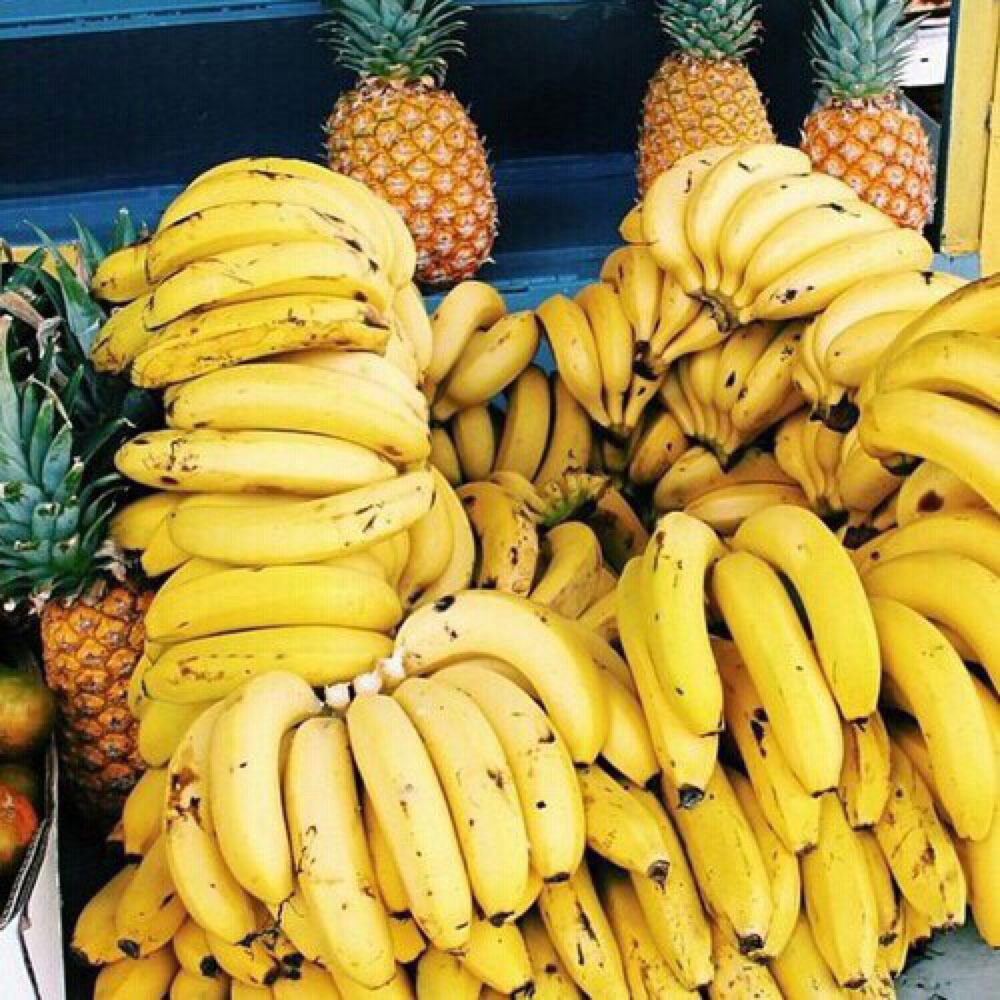 fruits8